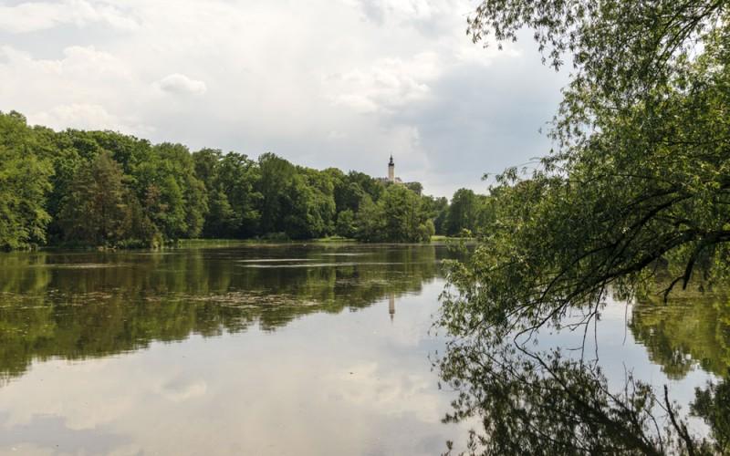 Fürstlich Greizer Park mit Binsenteich