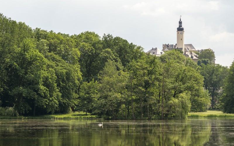 Fürstlich Greizer Park, Binsenteich und Oberes Schloss
